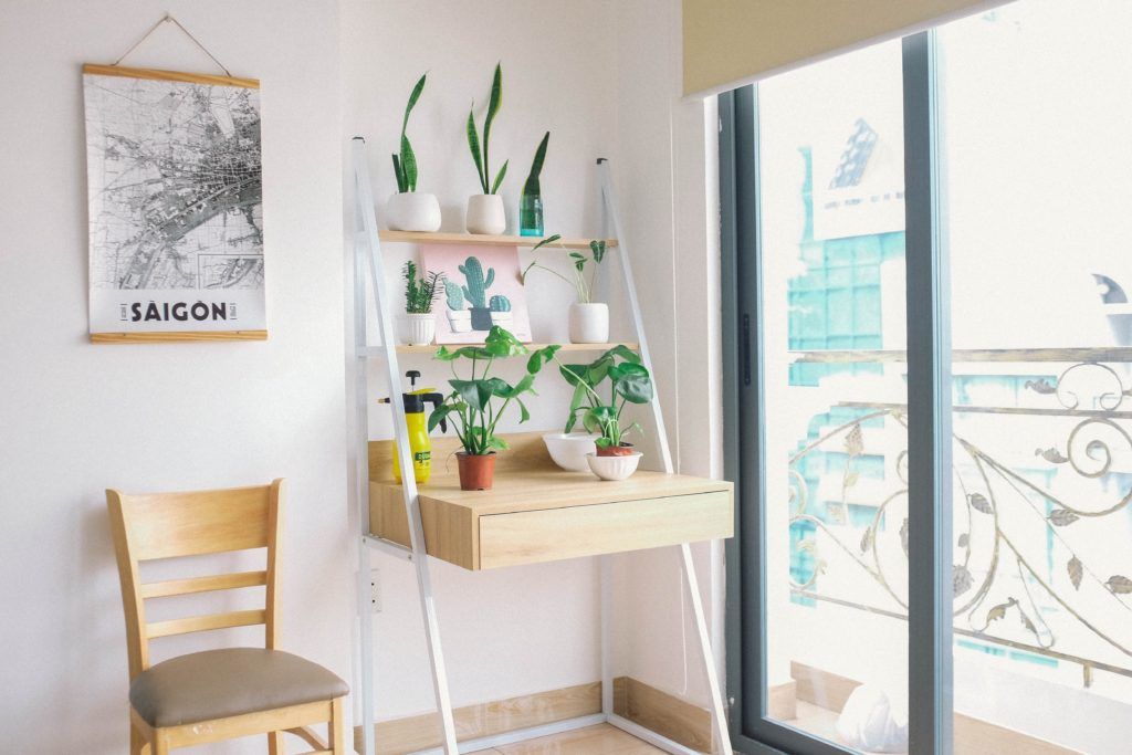 Houseplants-For-Anxiety