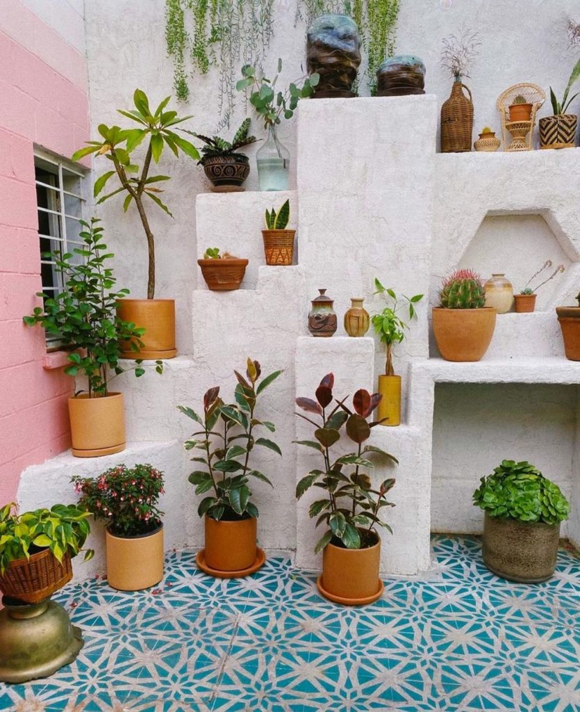 How-To-Prepare-Your-Indoor-Plants-To-Move-Outdoors