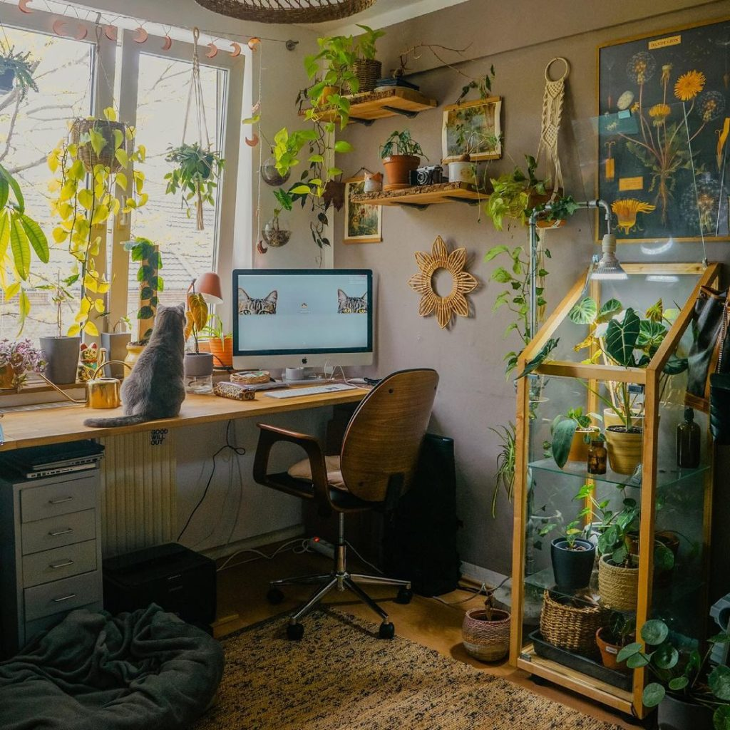 Indoor-Plants-Can-Help-You-Be-More-Productive