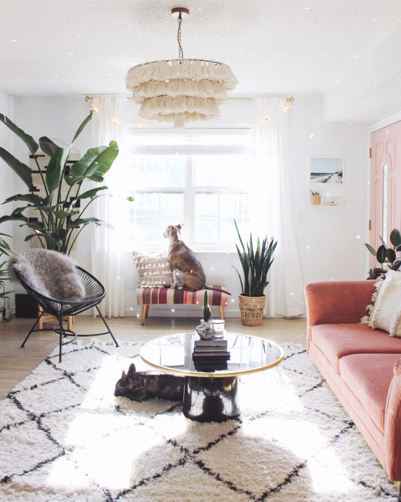 How-To-Make-Your-Home-Pet-Friendly