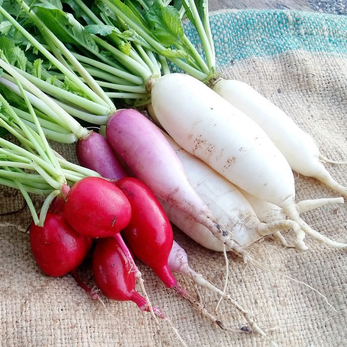 Late-Summer-Vegetables-You-Can-Plant